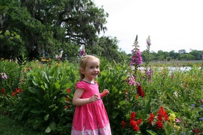 charlestons-eden-magnolia-plantation-and-gardens-1