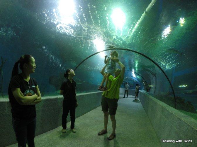 Boracay Oceanarium